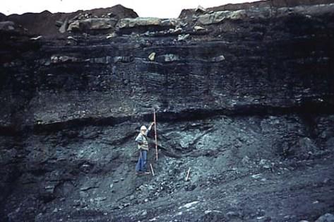 CoalFields