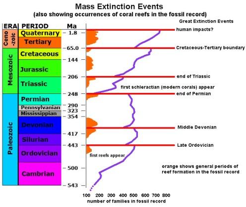extinctionTimeline