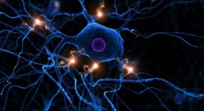 NeuronElectricity