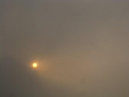 sun ash