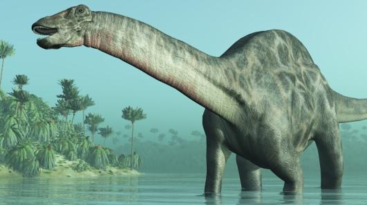 Dicraeosaurus Dinosaur