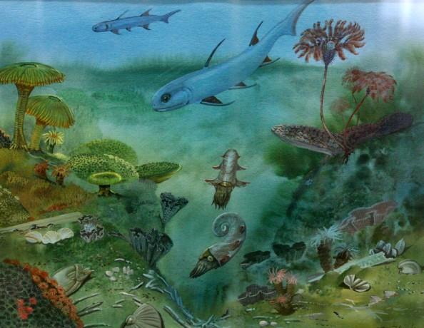 DevonianLife