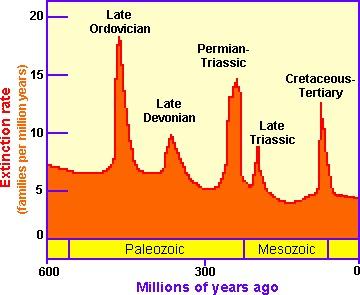 extinction timeline2