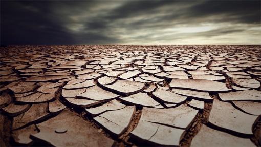 improve-clay-soil