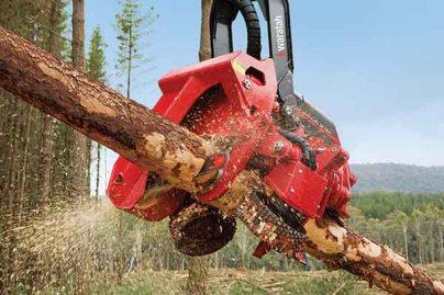 TimberHarveste